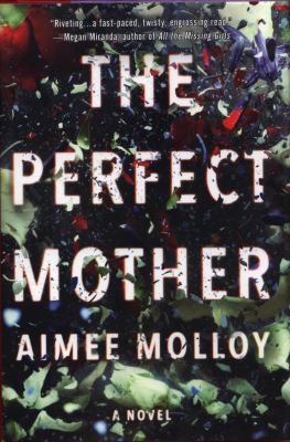 The perfect mother : a novel Book cover