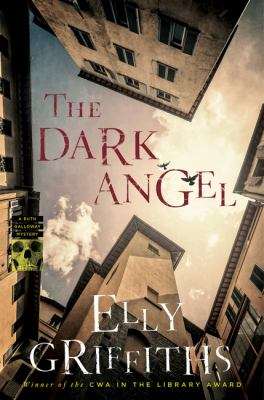 The dark angel Book cover